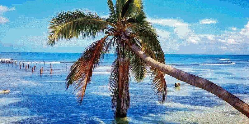 החופים של קובה